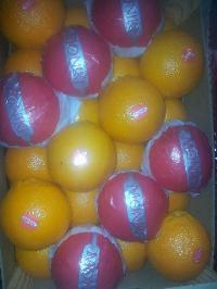 Fresh Oranges 01