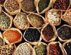 Indian Spices and Rice 02