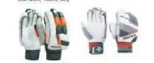 Cricket Glove 05