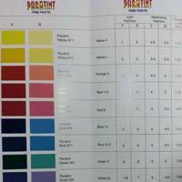 Pigment Fine Paste Interior and Exterior