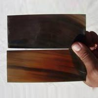 Buffalo Horn Plate 09