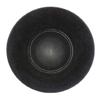 Dual Speaker Cone