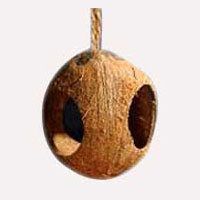 Coconut Shell Birds Nest