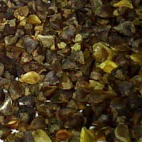 Buckwheat Kernel