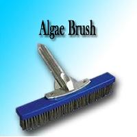 Algae Brush
