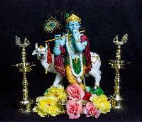 Decorative Krishna Statue