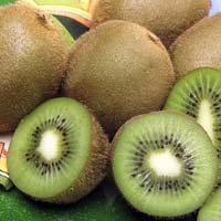 Australian Fresh Kiwi