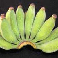Monthan Banana