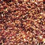 Golden Bysaki Seedlac Manufacturer and Exporter