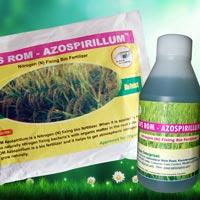 SAFS ROM – Azospirillum