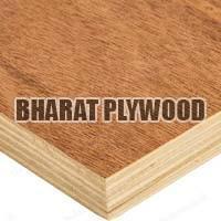 Poplar Plywood (12mm)