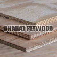 Poplar Plywood (9mm)