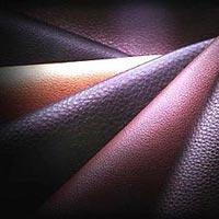 Buffalo Leather 02