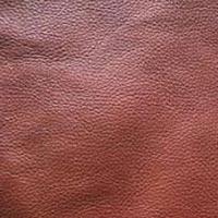 Buffalo Leather 03