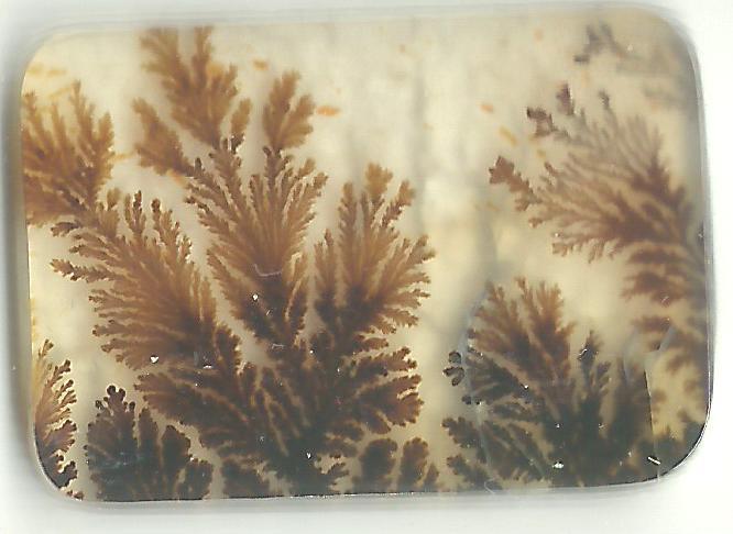 Dendritic Agate Stones 09