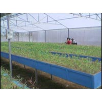 FRP Horticulture Plantation Trays