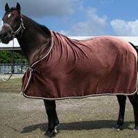 Horse Rug 01