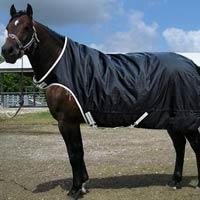 Horse Rug 02