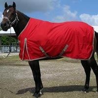 Horse Rug 04