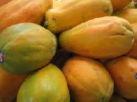 Fresh Indian Sweet Papaya 02