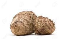 Fresh Taro Suppliers/Wholesalers/Exporters In India