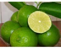 Fresh Seedless Lemon