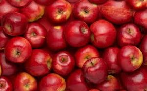 Grade A Fresh Fuji & Royal Gala Apples For Sale
