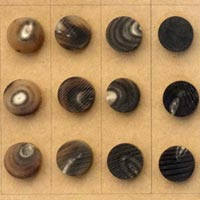 Horn Button Blanks