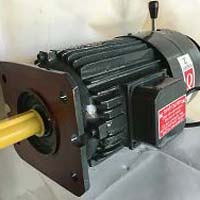 Lift Duty Motor in C.I. Construction