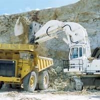 Excavator & Shovel