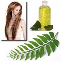 Neem Tea Tree & Basil Hair Oil