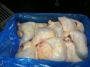 Frozen Chicken 02