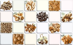 SG K 432 - 250 x 375 mm Kitchen Series Digital Wall Tile
