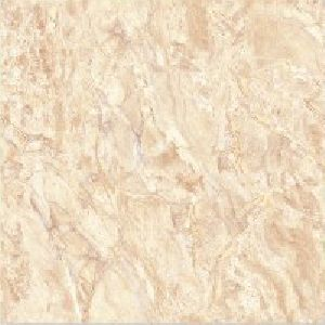 SP24104 - 600 x 600mm Glossy Collection Digital Floor Tile