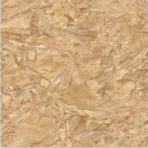 SP24105 - 600 x 600mm Glossy Collection Digital Floor Tile