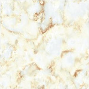 SP24108 - 600 x 600mm Glossy Collection Digital Floor Tile