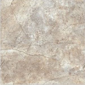 SP24109 -  600 x 600mm Glossy Collection Digital Floor Tile