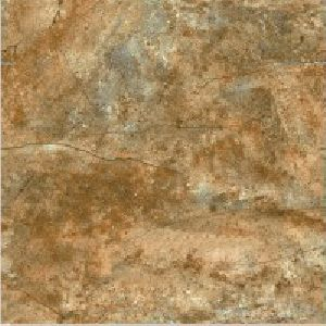 SP24110 - 600 x 600mm Glossy Collection Digital Floor Tile
