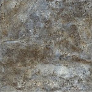SP24112 - 600 x 600mm Glossy Collection Digital Floor Tile