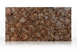 Round Petrified Wood Semi Precious Slab