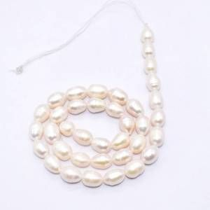 PULZ-031 White Shell Pearl Bead