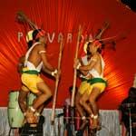 Folk Dance Organizer