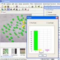 Biowizard Image Analysis Software