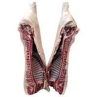 Frozen Pork Carcass