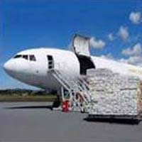 Logistics Services & Freight Forwarding Services