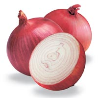 Fresh Onion Vegetable