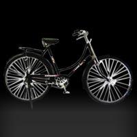 Ladybird Bicycle