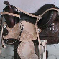 Horse Roper 02