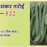 Ridge Gourd Seeds (Mantra - 522) 01