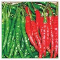 Chilli Seeds (AGNI - 324)